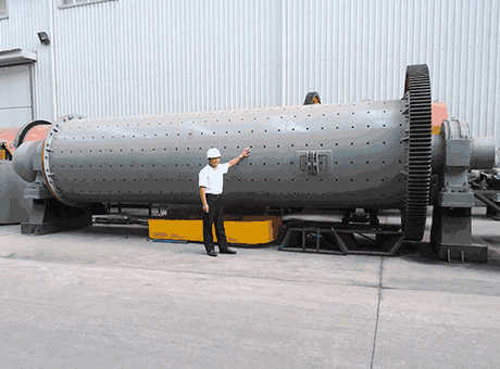 USA high quality large limestone wear parts of ball mill