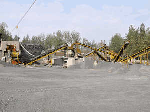 high endlargecoalore processing line sell at a loss in